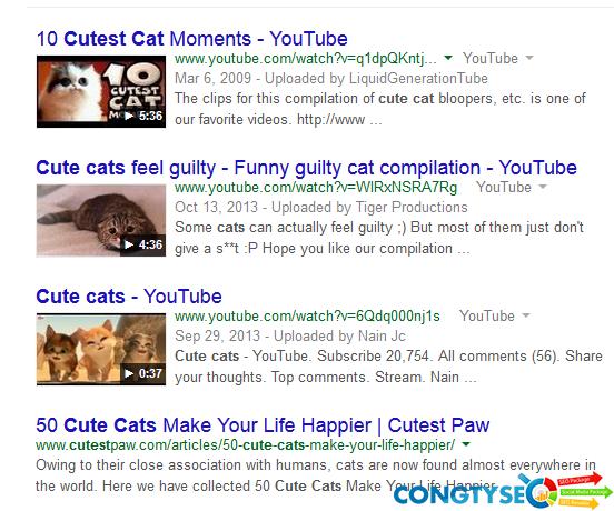 5 chien thuat seo youtube de tang traffic cho website hieu qua nhat3